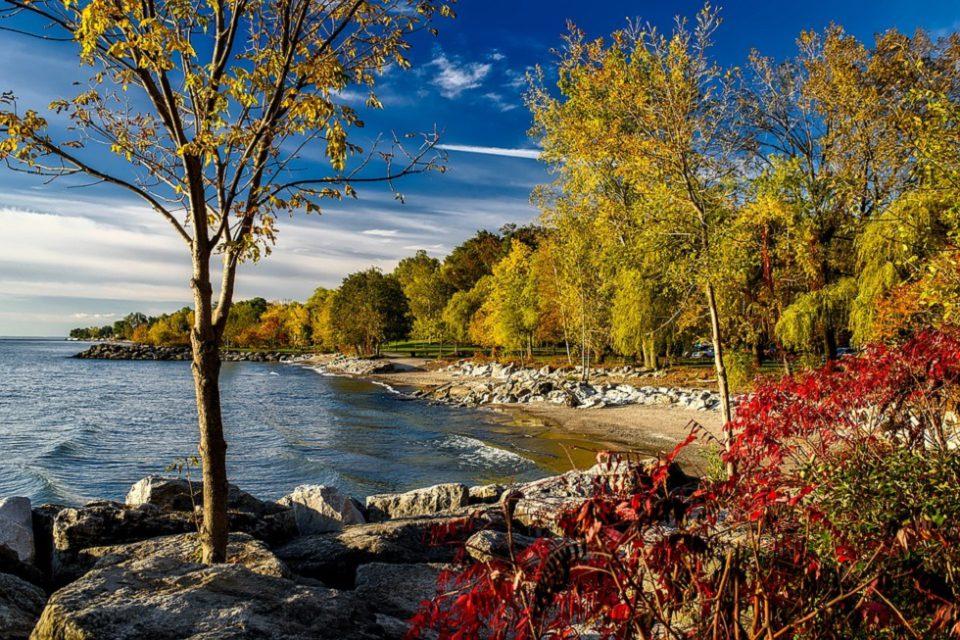 Lake Ontario Shoreside
