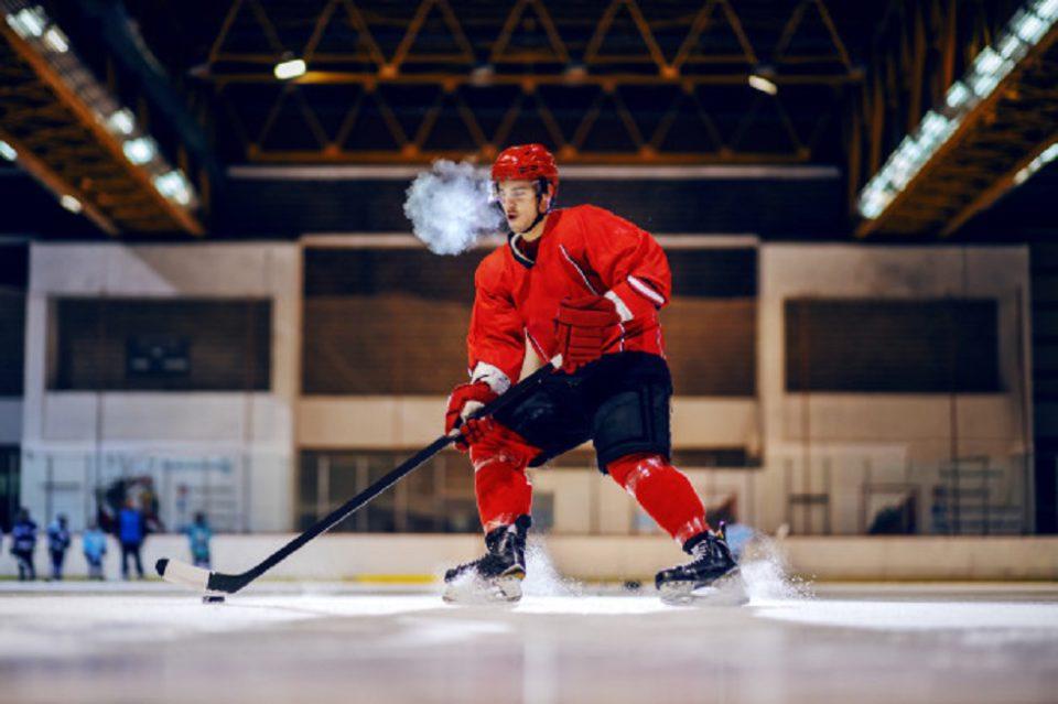 canada hockey fans